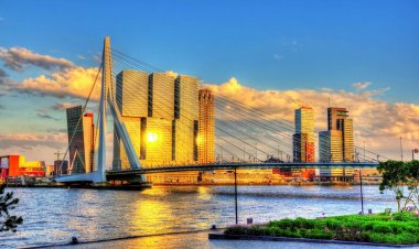 Best 10 Attractions in Rotterdam | Top & Best Things to do in Rotterdam
