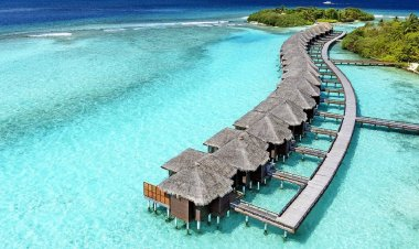 5 Best Places to Visit in Maldive | Top Things To Do In Maldives